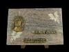 plaque-jesus