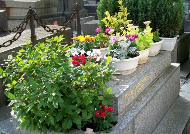 tombe fleurs montmartre
